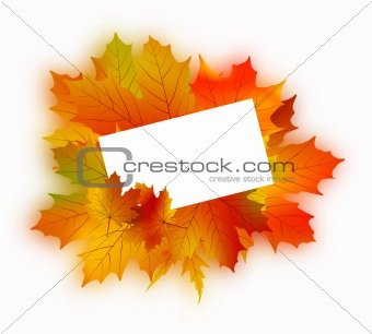 Autumn card on white.