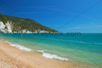beach and coast landscape