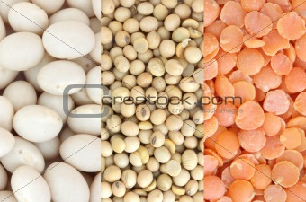 Red lentil, soya and white beans