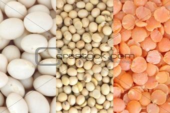 Red lentil, soya and white beans
