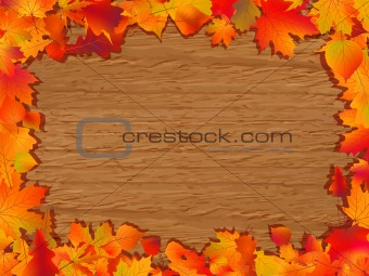 Autumn background with colored leaves.