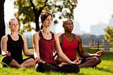 City Park Yoga