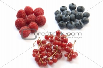 """raspberries blueberries and currants"""