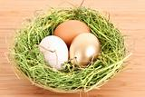 Brown,white and golden hen's egg in the grassy nest on the woode