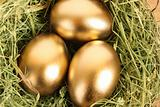 Three golden hen's eggs in the grassy nest on the wooden table