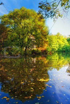 Autumn landscape with pond