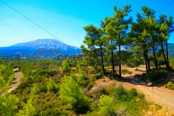 Trees and mountain landscape. Rhodes. Greece