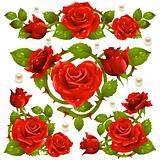Red Rose design elements