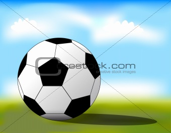 Football ball on the grass