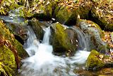 Falls on the small mountain river in a wood shooted in autumn