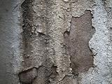Grunged Old Wall