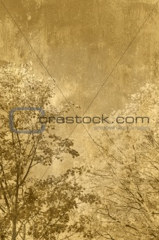 Background grungy trees