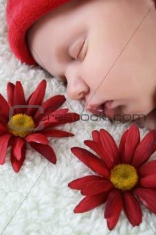Sleeping Newborn