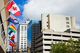 National flags in downtown of Grand Rapids