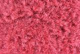 Hairy red fabric