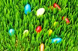 Easter concept - colourful eggs in green glass