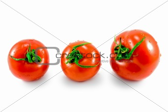 three fresh tomatoes
