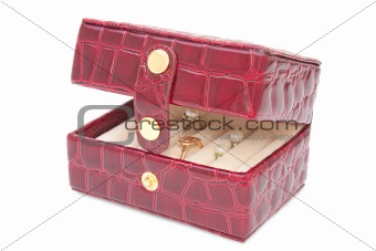 Box for Jewerly Open isolated