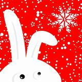 Funny rabbit on red christmas snowing background