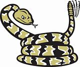 Rattlesnake Cartoon