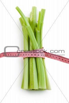 green celery sticks on white background
