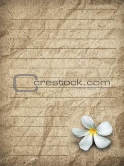old brown grunge letter paper