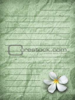 Green grunge letter paper