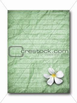 old green grunge letter paper
