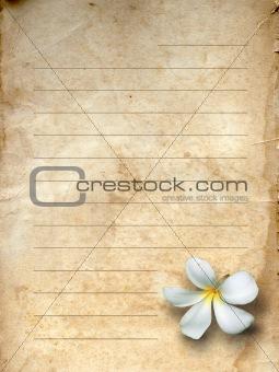 old grunge letter paper