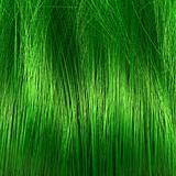 Grass or hair