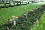 crosses at cemetery in autumn mist