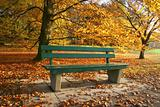Bench in an autumnal park