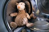 Toy Hedgehog in Washing Machine