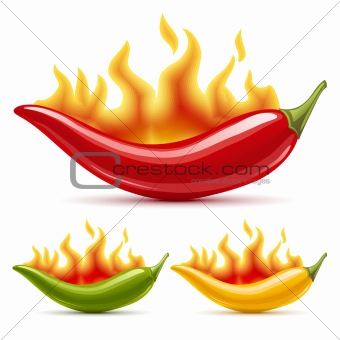 Green, yellow and red hot chili peppers