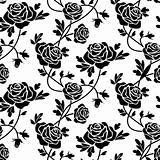 Black roses at white