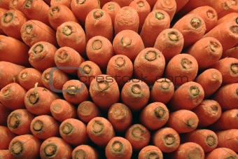 Carrots stacked up