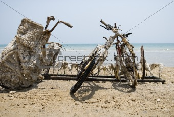 Forgotten bicycles by the dead sea