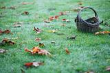 Empty Basket On Grass With Leaves Horizontal