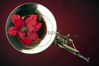 French Horn and Poinsettia Isolated