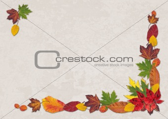Autumn Leaves Landscape
