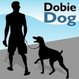 Man Walking Doberman Pinscher Dog