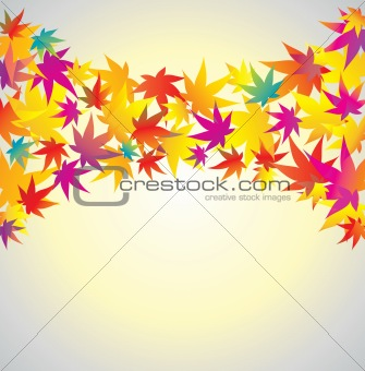 Autumn background. Maple.