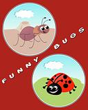 Funny Bugs