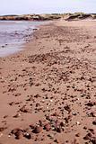 PEI Beach Pebbles