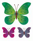 Collection of butterflies in the vector EPS10