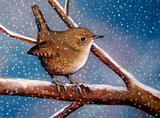 Freehand Pastel Painting of Wren in Winter