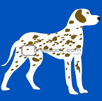 Blanching with spot dog on turn blue background