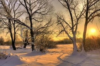 Beautiful winter sunset