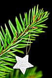 Fir branch with the star.