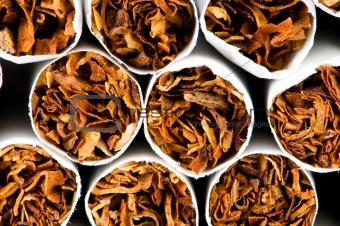 Close up of smoking cigarettes as antismoking concept